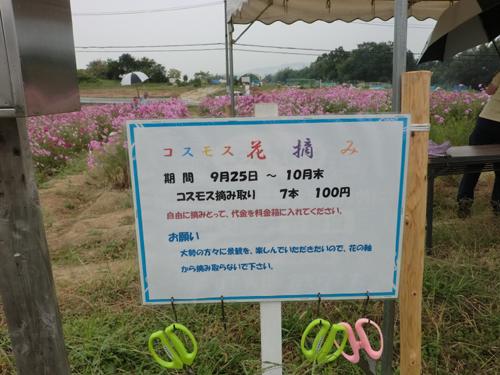 13101701.jpg